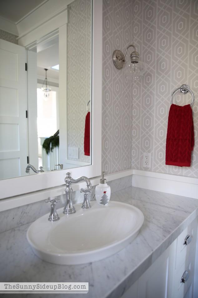 raised-sink-in-powder-bathroom