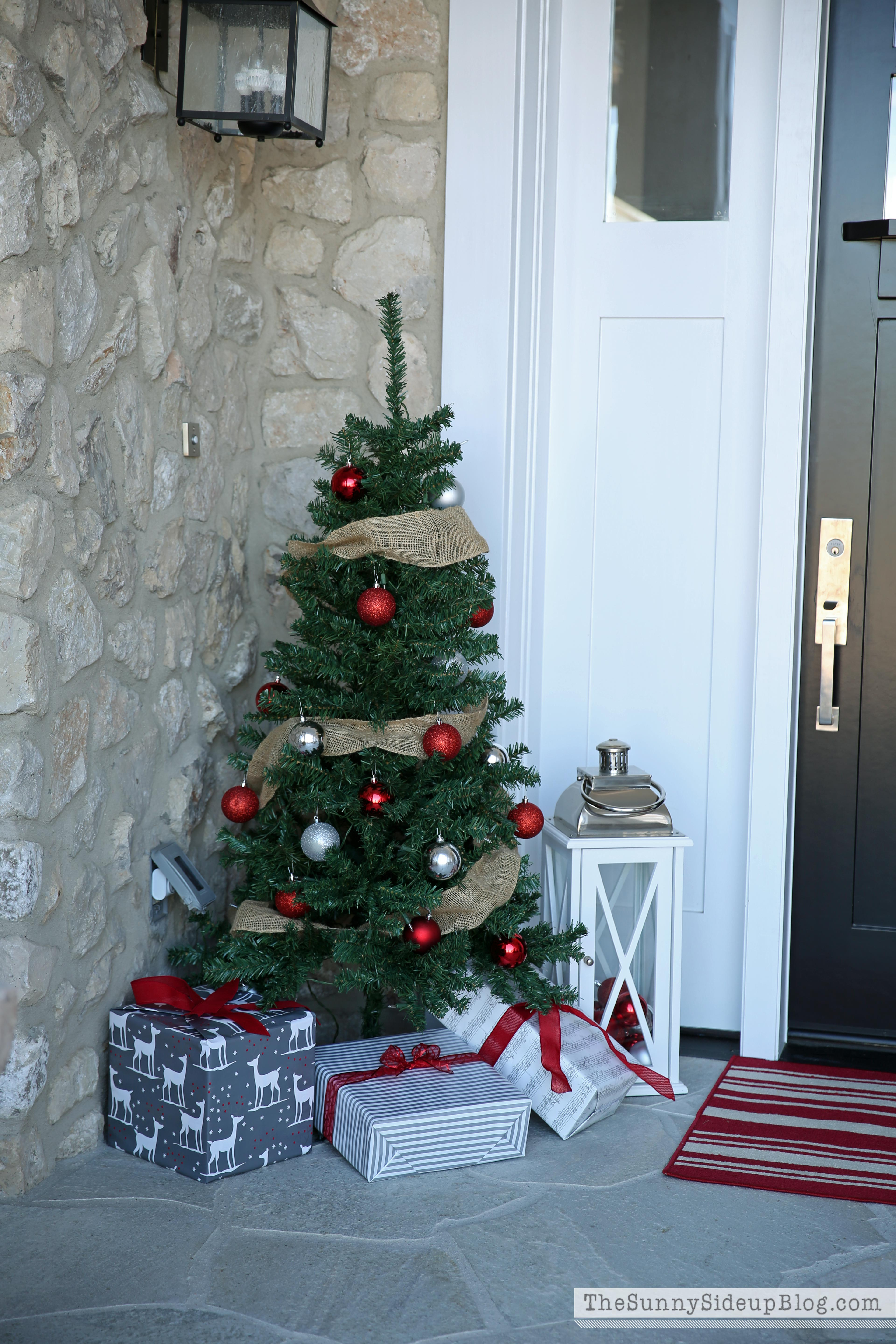 Christmas Trees On Front Porch