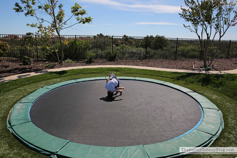 biggest backyard trampoline backyard progress the sunny side up blog