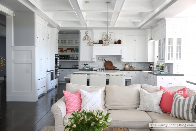 coffered-kitchen-ceiling copy
