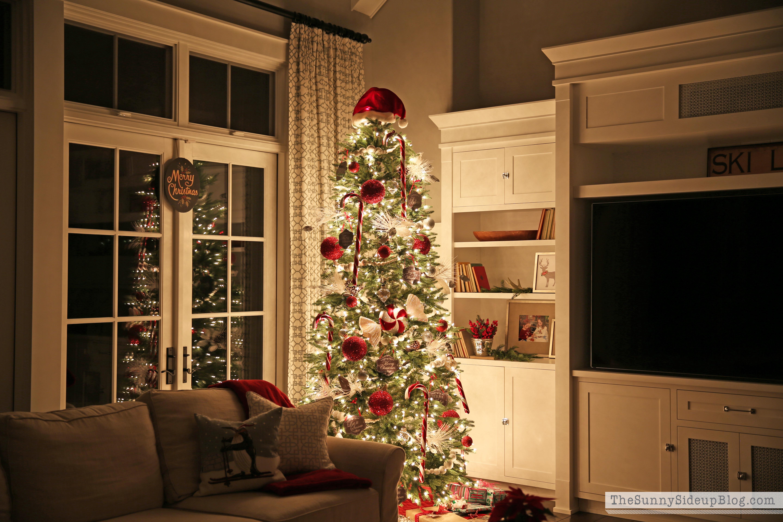 cozy-tree