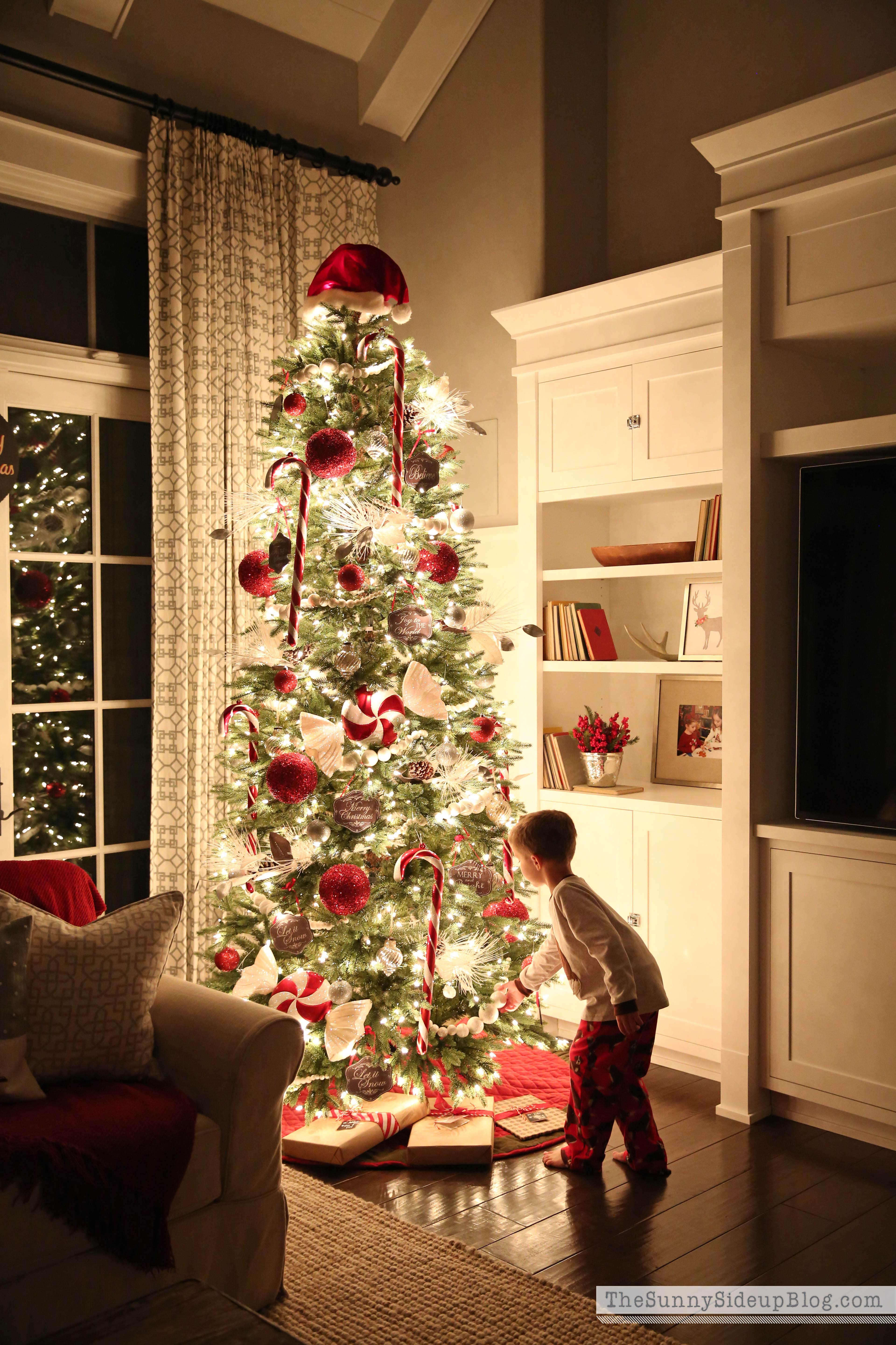 When Can I Put Up My Christmas Tree