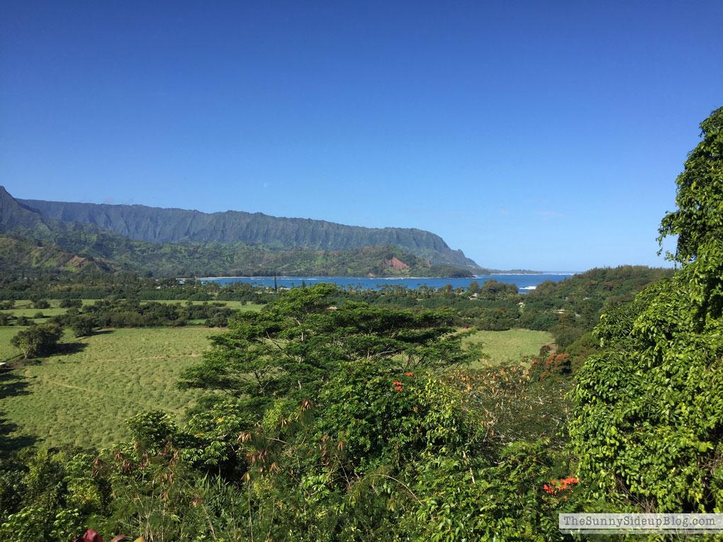 Home again!  (Kauai)