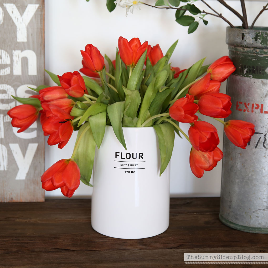 coral-tulips-11
