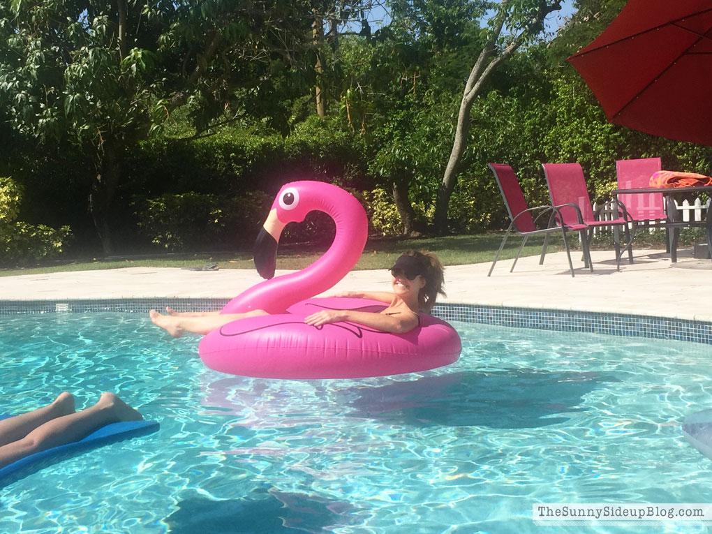 flamingo-floaty