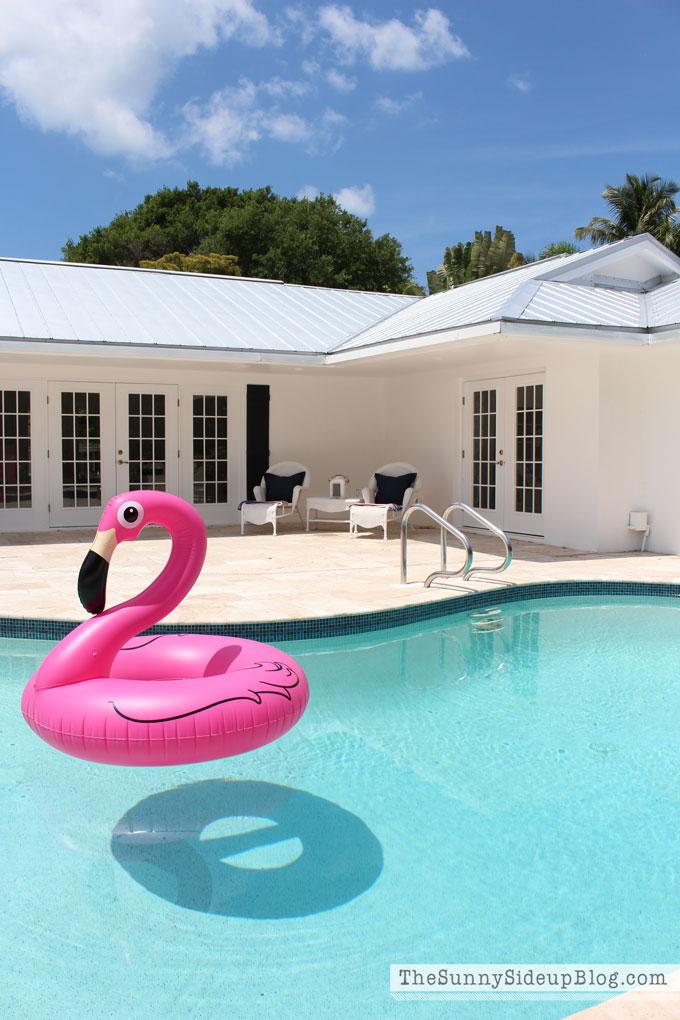 pink-flamingo-floaty