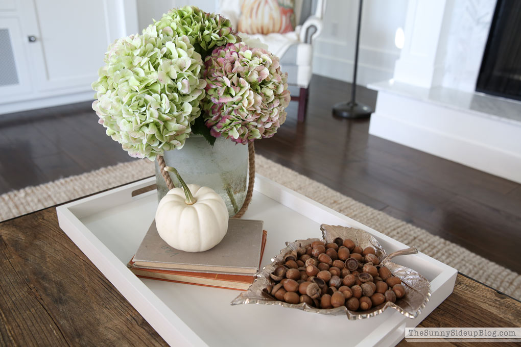 real-acorns-for-fall