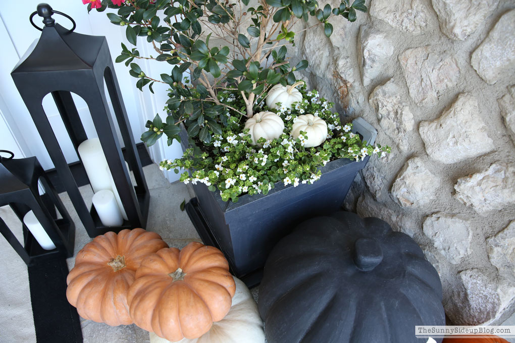 halloween-porch-decor-pottery-barn-lanterns