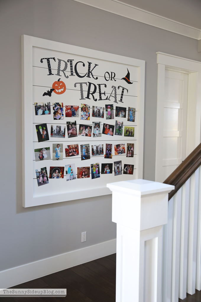 Trick or Treat Shiplap Halloween Picture Display (Sunny Side Up)