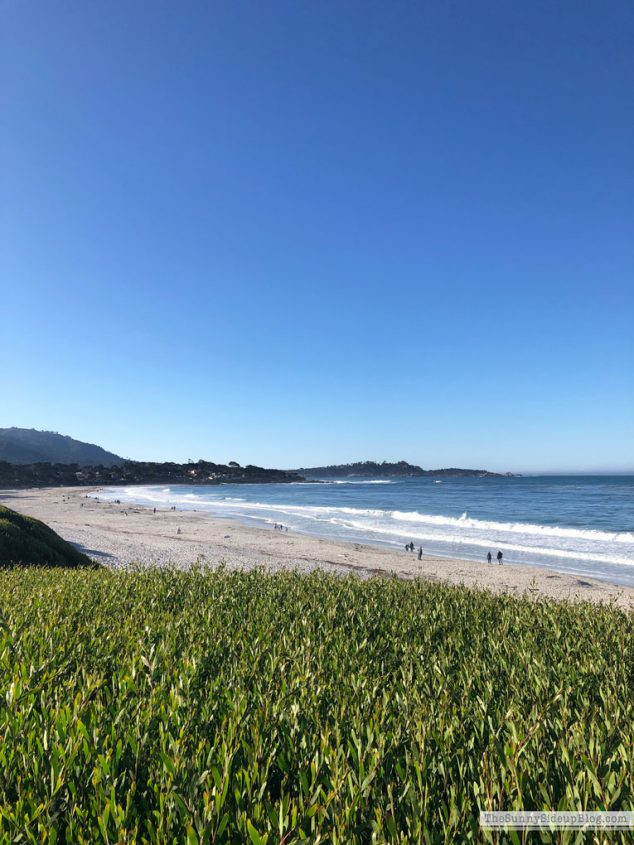 Carmel by the Sea (Sunny Side Up)