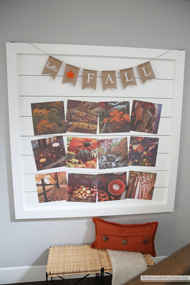 Fall decor (Sunny Side Up)