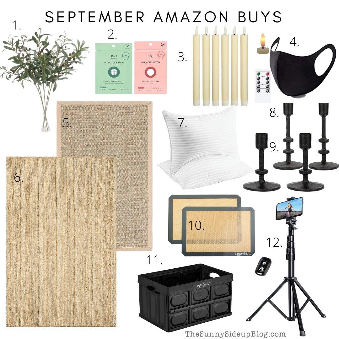 September Amazon Buys (thesunnysideupblog.com)